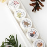 Holiday Lip Balm Gift Sets