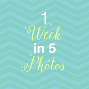 Behind the Scenes: 1 Week in 5 Photos