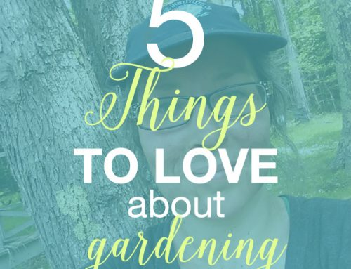 5 Things to Love About Gardening