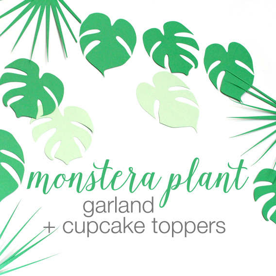 monstera plant cupcake toppers